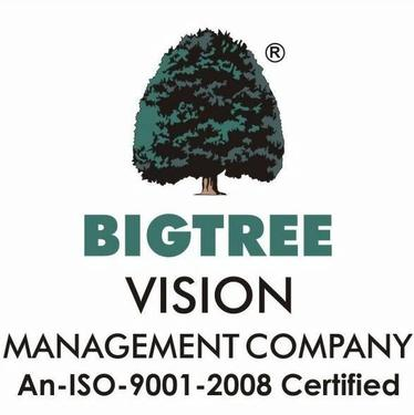 BIGTREE VISION MANAGEMENT COMPANY